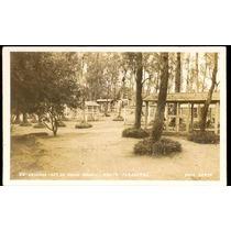 Cartão Postal Antigo Goiânia Go Horto Florestal