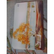 Cartão Raro Da B. Telecom 6/03. Tir. 50000. Ipê Amarelo