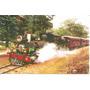 Ml-5153 Cartão Postal Trem Maria Fumaça (não Circulado)