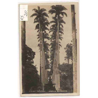 Ml-0955 Cartão Postal Antigo Wessel - Jd. Botânico Rj