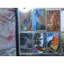 Série Pássaros Exóticos * Frete Grátis*