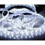 Fita Led 5050 Branco Frio 300 Leds 5 Metros Super Luz Clar