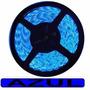 Fita 300 Leds Uso Externo 12v 3528 Rolo 5mts-azul - V275