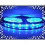 Fita De Led 3528 12v 5 Metros Azul Neon Dupla Face
