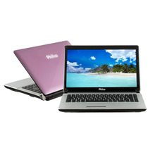 Notebook Philco 14 Rosa Amd Dual Core C50 2gb Ram 320gb Hd