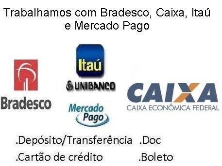 O Investidor Em Ação - Luiz Fernando Rogé Ferreira