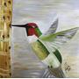 Quadro Decorativo- Beija - Flor Colorido
