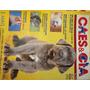 Revista Cães & Cia Nº 179 - Março/1994