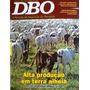 Revista Dbo 334 - Boa Infra-estrutura Terra Barata Clima Mg