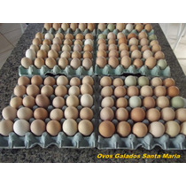 Ovos Galados De Galinha Caipira Gigante