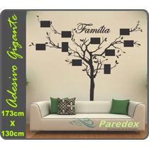 Adesivo Parede Árvore Porta Retratos 173x130cm Frete Grátis