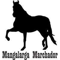 Adesivo Cavalo Mangalarga Marchador - Frete Grátis