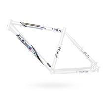 Quadro Bike Walk 1.0 Gts M1 19