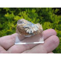 Quartzo Rutilado Com Hematita - Mineral Para Coleção