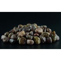 1 Kg -pedras Roladas Jaspe Leopardo - Jlp