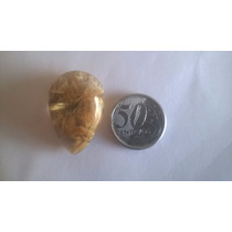 Quartzo Rutilado Dourado Gota Cabochão