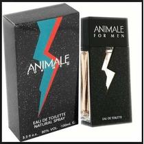 Perfume Animale Masculino Tradicional Edt / 100ml