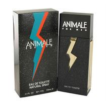 Perfume Masculino Animale For Men 100ml Original