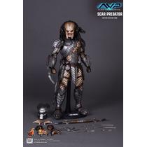 Tk0 Toy Hot Toys Alien Vs Predator Scar Predator Predador