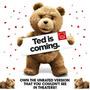 Urso De Pelucia Do Filme Ted Original - Importado