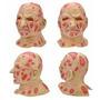 Mascara Freddy Krueger + Luva Garra - Pronta Entrega