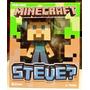 Tk0 Toy Minecraft Mojang Vinyl Steve? / Jinx