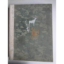 Livro Historia De La Pintura H.w. Janson Y Dora Jane