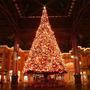 Pisca Natal Colorido 380 Lampadas Led 38m 8 Funções 110v