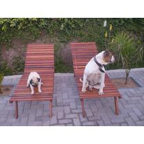 Espreguiçadeira Cadeira Piscina Ao Natural Madeirasem Verniz