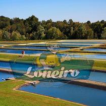 Lona Preço M² Lago Artificial Manta Impermeável Pppe Ci/pr