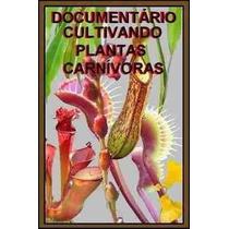 Fantástico Documentário Cultivando Plantas Carnívoras Em Cd