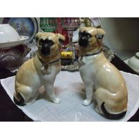 Antiquissimo Par De Pugs Em Porcelana