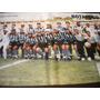 Poster Botafogo Campeão Brasileiro 1995