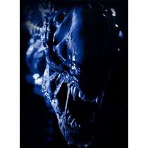 Poster Cartaz Alien Vs Predador #6
