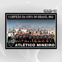 Poster 45x30 Atlético Mineiro Campeão Copa Do Brasil 2014