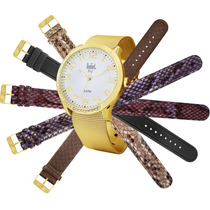 Relógio Feminino Troca Pulseira - Sk65184/b Dumont