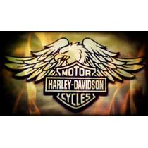 Harley Davidson Motor Cycle Logo Pirógrafo Quadro 1 Metro