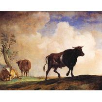 Boi Vacas Fazenda Sitio Reprodução De Paulus Potter Na Tela