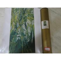 #14755 - Gravura Pintora Laura Porcelli - Green Space!