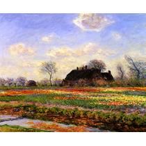 Campo Tulipas Paisagem França 1886 Pintor Monet Tela Repro