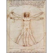 Quebra Cabeça Puzzle Leonardo Da Vinci: Vitruvian Man