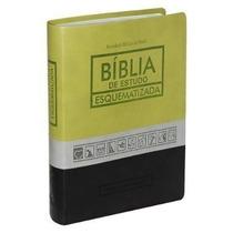 Biblia De Estudo Esquematizada Texto Bíblico Em Preto