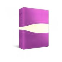 Bíblia Nvi - Letra Grande - Luxo Vinho E Branca