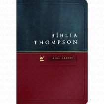 Bíblia Thompson Aec Letra Grande Luxo Cor Vinho E Verde