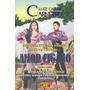Livro Espírita: Amor Cigano (luiz Carlos Carneiro)