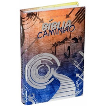 Biblia Caminho Capa Dura Ilustrada Metalizada( Adolescente )