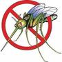 Mata Mosca Dengue Mosquito Eletrico Repelente Inseto Dengoso