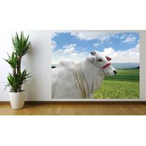 Adesivo De Parede Imagem Foto Animal Boi Nelore Fazenda