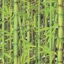 Papel De Parede Bambuzal Replik Vinílico Texturizado Francês