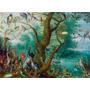 Foto P/ Quadro Jan Van Kessel 90x123cm Concerto Dos Pássaros